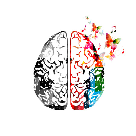 Colorful human brain illustration. Stock Vector - 85980662