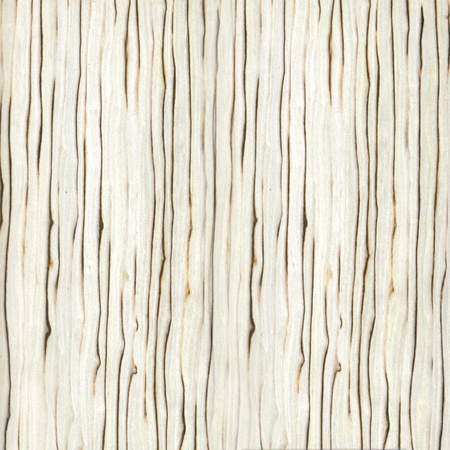 Texture of white zebrano veneer (high-detailed wood texture series) photo