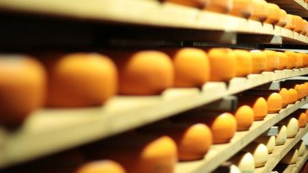 queso de cabra: Pan de queso azul gouda alimentos parmesano suizo de productos lácteos saludables leche de Francia
