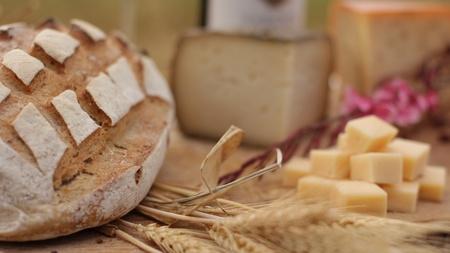 wine Blue cheese gouda bread grape food parmesan swiss dairy healthy france milk photo