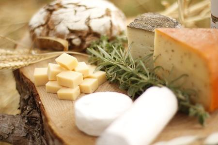 queso de cabra: vino queso gouda Azul pan de uva alimentos parmesano suizo de productos l�cteos saludables leche de Francia
