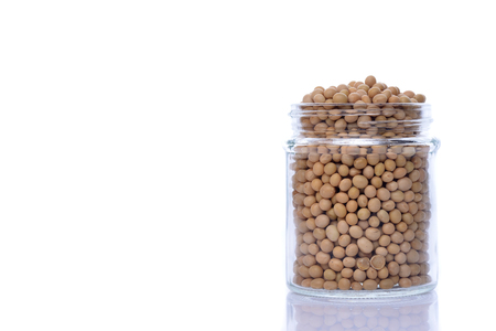 aduki bean: bean