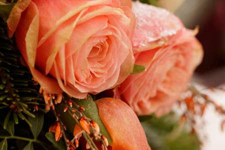 Makro auf gefrorenen rosa Rosen. Bestattungsarrangement Standard-Bild