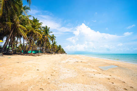 Beautiful brown sand beach with coconut trees, clear sea water and blue sky with white cloud. Standard-Bild