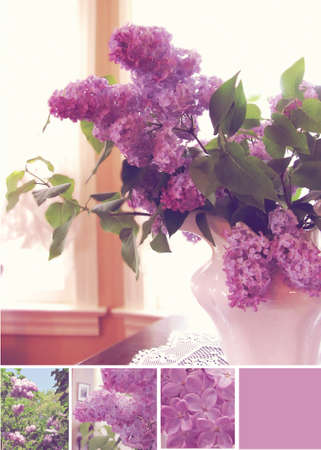 lilac in vase at house in front of a window  photo