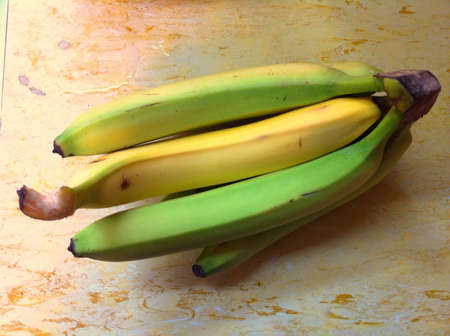 Yellow banana in different direction from the green ones  Banco de Imagens
