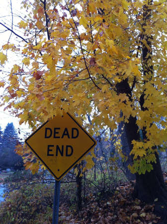 beside: Yellow dead end beside yellow tree  Stock Photo
