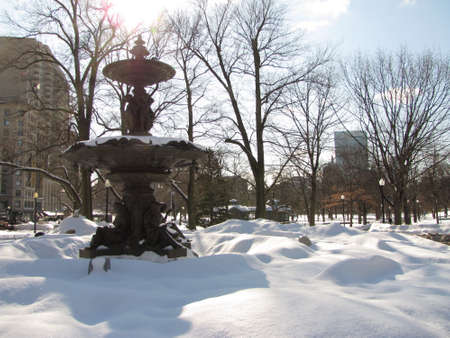 Boston Common park during a snowy sunny day  photo