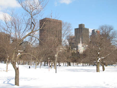 Boston common during a snowy day with clear blue sky photo