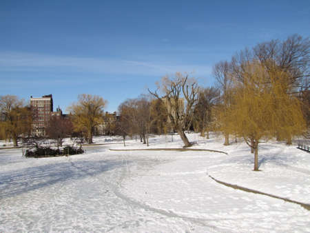 Boston Public garden during winter  photo