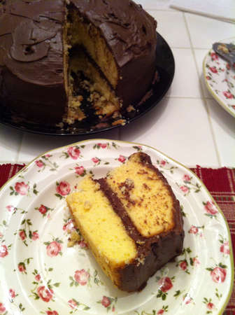 Chocolate cake 版權商用圖片 - 25841147