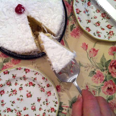 Coconut cake 版權商用圖片 - 28221163