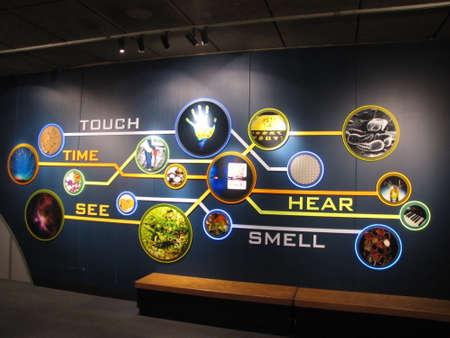 the five senses in Boston museum of Science Редакционное