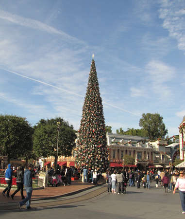 disneyland during Christmas time 2010, CA