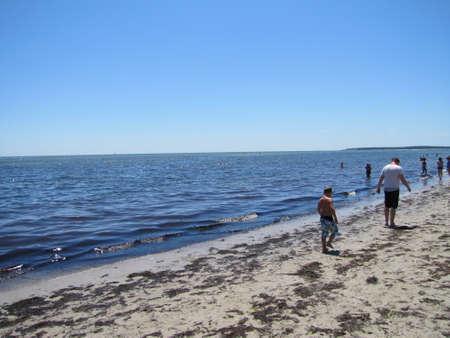 beach in cape cod, MA, USA 2011 Imagens