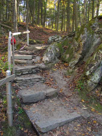 Stair in hiking path in a public park