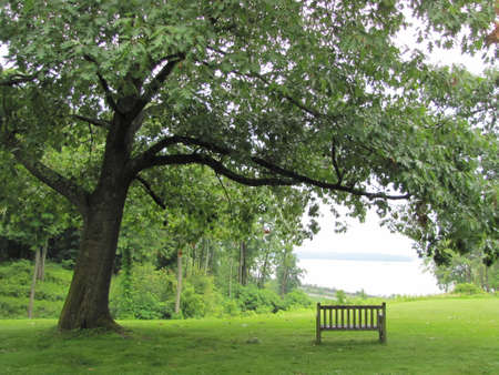 an empty bench at a park looking at Hudson river