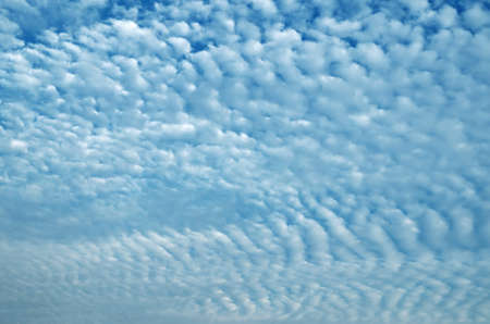 Clouds in the form of ridges, consisting of cereal, which merge into a continuous covering