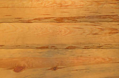 Wall of ecologically clean raw material of pine board wane Stockfoto