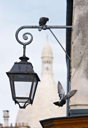 Montmartre pigeons with Sacre Coeur in color