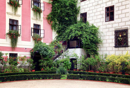 architectonic: The architectonic detail with  a lot of ornamental plants