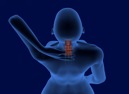 vertebrae: Pain in the neck x-ray scan with visible cervical vertebrae