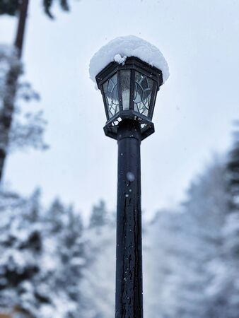 Selective focus on a tall, dark lamp post during a snow storm in the pacific northwest woodland, evergreen trees in the background