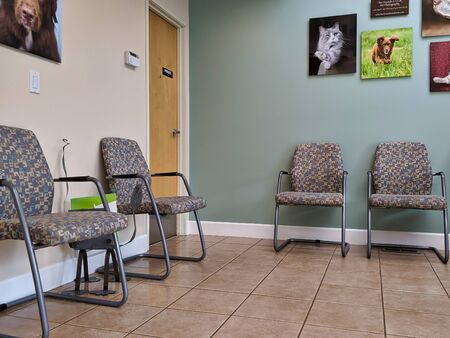 View of empty seating in the waiting room of a veterinary office