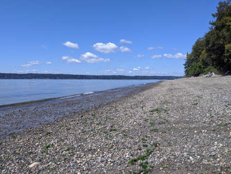 Wide, open view of Joemma Beach State Park in Longbranch, WA, on a bright sunny day