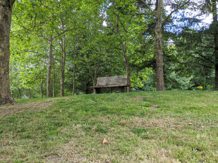 Empty, lonely wooden park bench next to a walking path in a park filled with lush evergreen trees Standard-Bild