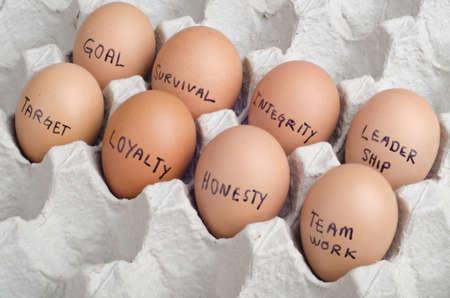 Egg concept of organization 版權商用圖片