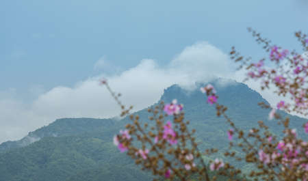 Chang Pha Dan, the highest mountain peak of Phrae province, one the its symbolic landmark Stok Fotoğraf