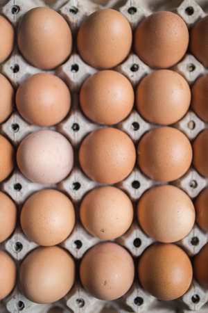 Chicken eggs in the pack with shallow depth of field from top view Imagens