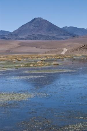 Vado Rio Putana in atacama desert photo