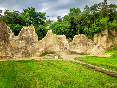 White Stone Rock Karst Landscape In The Middle of The Meadow or Grass Field with Footpath and Forest on Background. Standard-Bild - 123491144