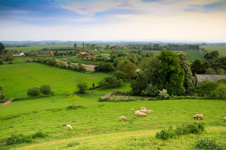 An English country scene in Somerset county
