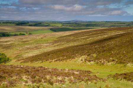 lynton: Exmoor National Park in Devon near Lynton and Lynmouth Stock Photo