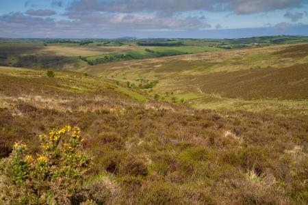 lynmouth: Exmoor National Park in Devon near Lynmouth