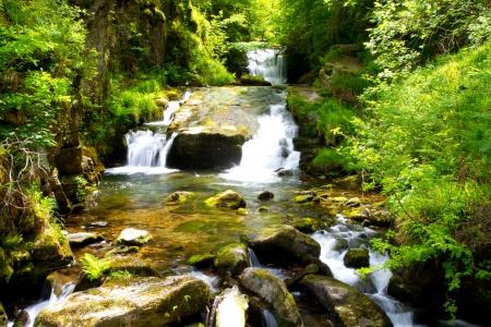 Waterfalls at Watersmeet near Lynmouth Devon