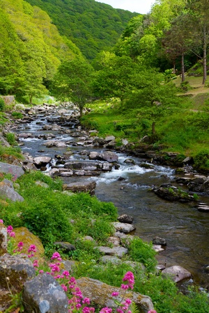 View towards Watersmeet near Lynmouth Devon photo