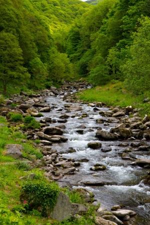watersmeet: Watersmeet near Lynmouth Devon