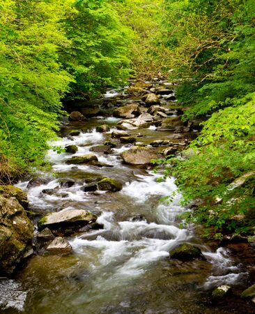 watersmeet: Walk from Lynmouth to Watersmeet and you follow the beautiful River Lyn Stock Photo