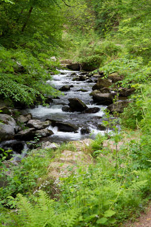 lynmouth: Watersmeet near Lynton in Devon