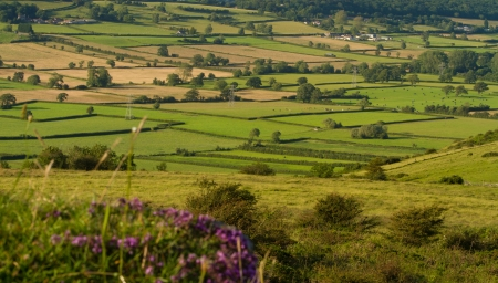 View from Crook Peak in Somerset, part of the Wessex Walk