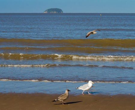 birnbeck: Steepholme Island from Weston-super-Mare beach Stock Photo