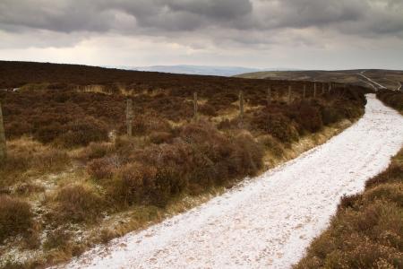 quantock hills: Winter Quantock Hills Somerset England