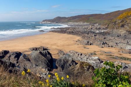 south west coast path: Costa del Devon Woolacombe Inghilterra in vista South West Coast Path verso Morte Point