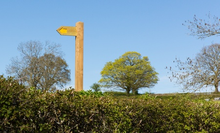 Yellow public footpath sign on wooden post with hedge trees and blue sky  photo