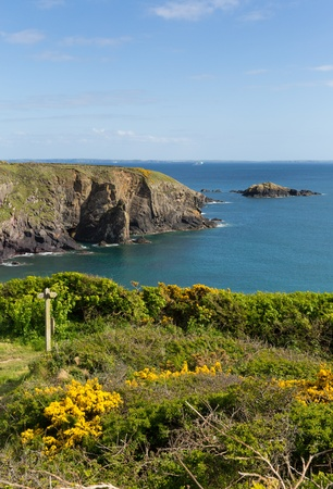 skomer island: Wales Coast Path Caerfai Bay Pembrokeshire West Wales UK near St Davids and in the Coast National Park Stock Photo