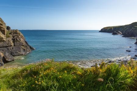 pembrokeshire: Caerfai Bay Pembrokeshire Wales UK Stock Photo
